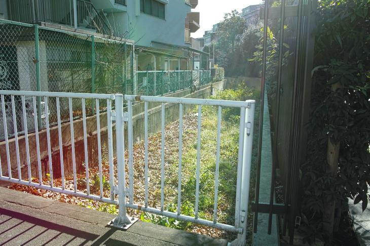 151226karasuyamagawa-74.jpg