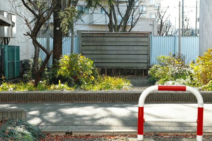 151226karasuyamagawa-76.jpg