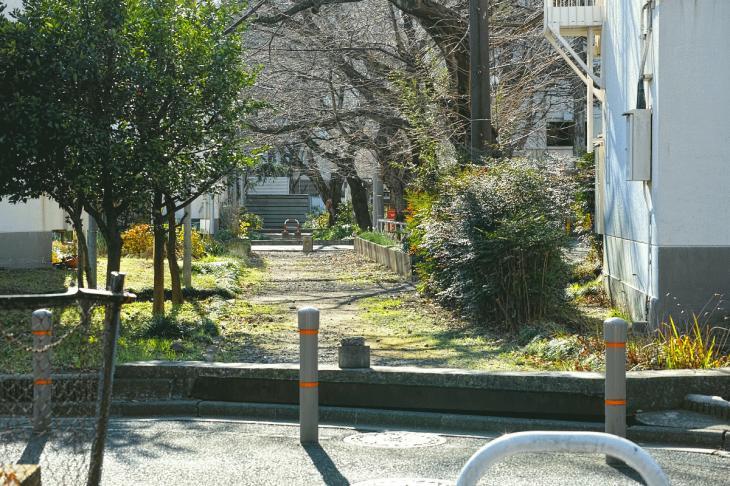 151226karasuyamagawa-78.jpg