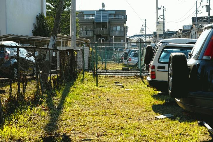 151226karasuyamagawa-86.jpg