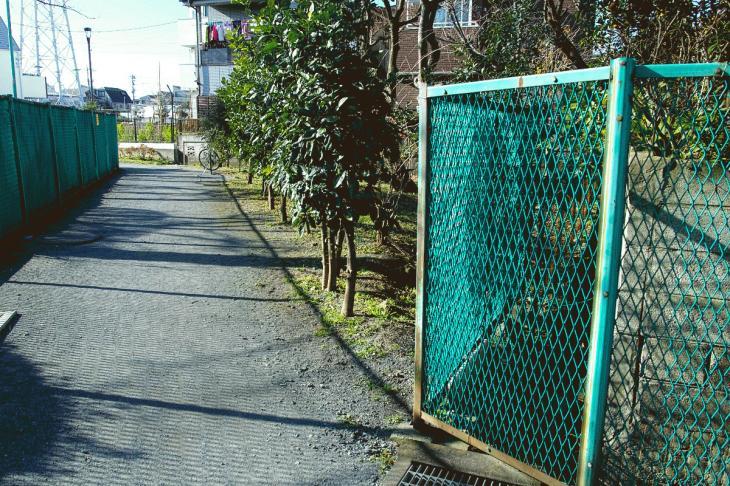 151226karasuyamagawa-92.jpg