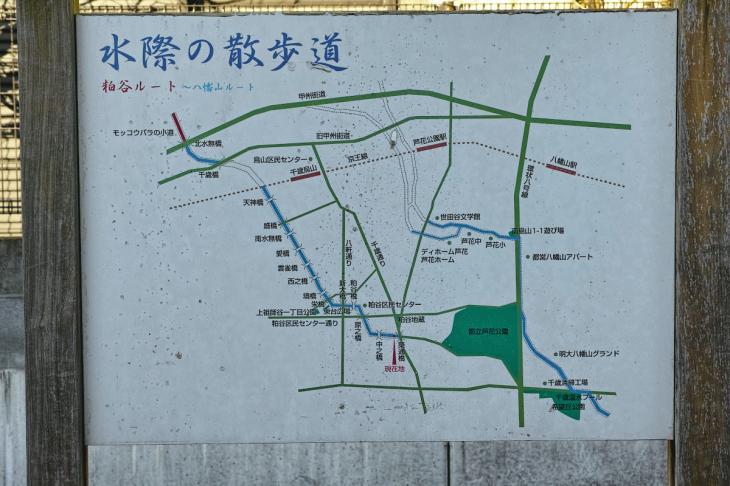 151226mizunasigawa-30.jpg