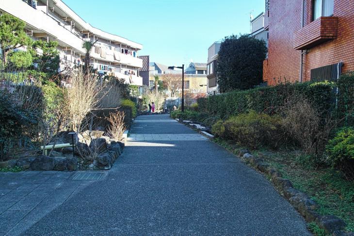 151226mizunasigawa-33.jpg