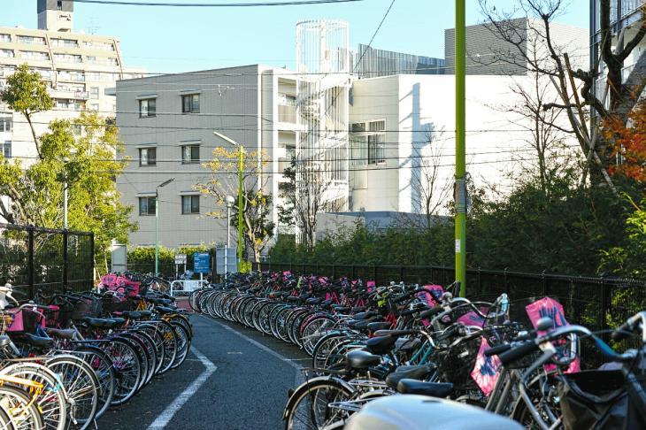 151226mizunasigawa-41.jpg