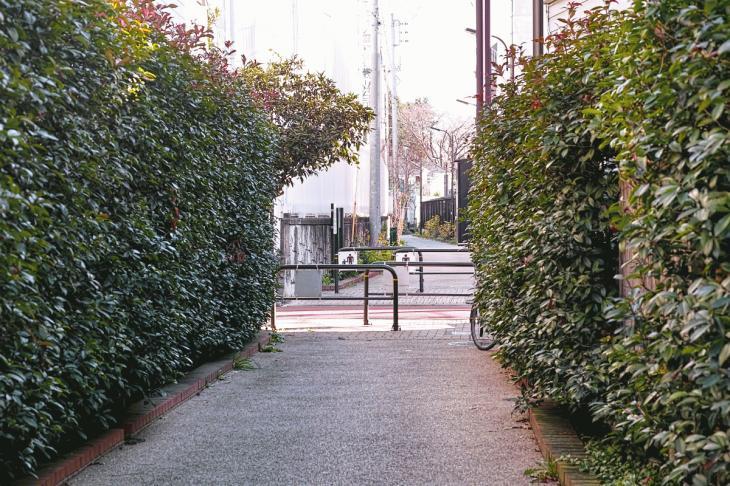 151226mizunasigawa-52.jpg
