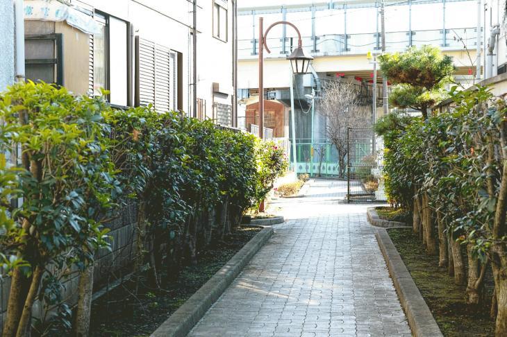 151226mizunasigawa-55.jpg