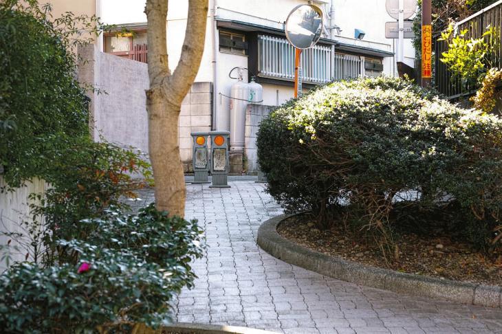 151226mizunasigawa-57.jpg