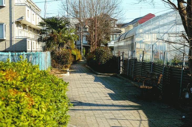 151226mizunasigawa-58.jpg