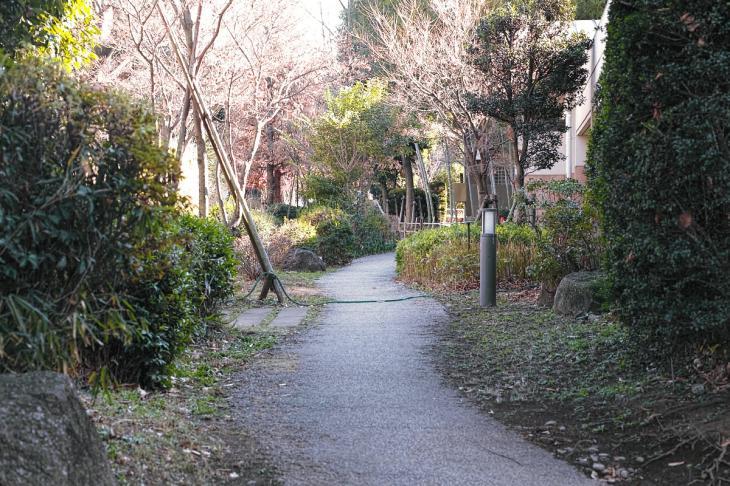 151226mizunasigawa-60.jpg