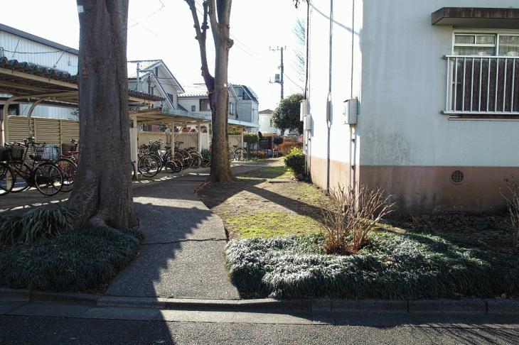 160206karasuyamagawa-10.jpg