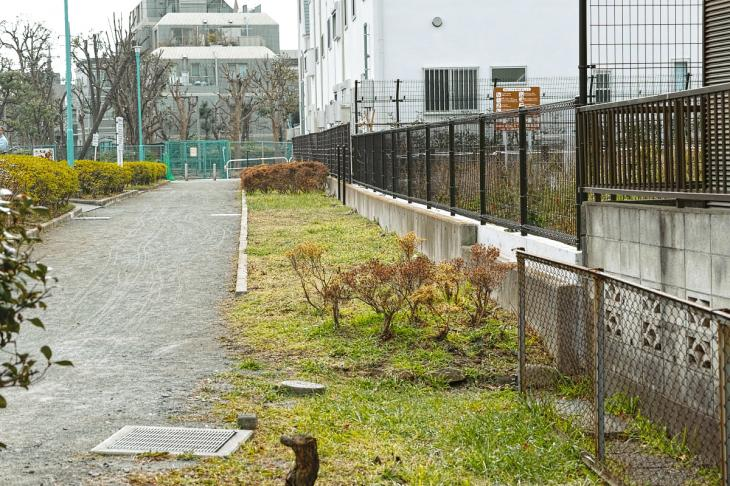 160206karasuyamagawa-20.jpg