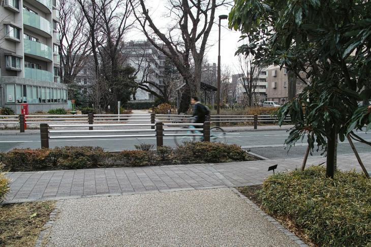 160206karasuyamagawa-32.jpg