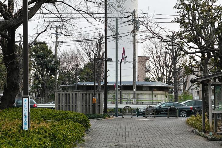 160206karasuyamagawa-37.jpg