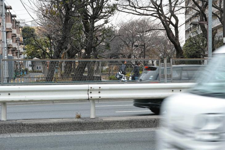 160206karasuyamagawa-38.jpg
