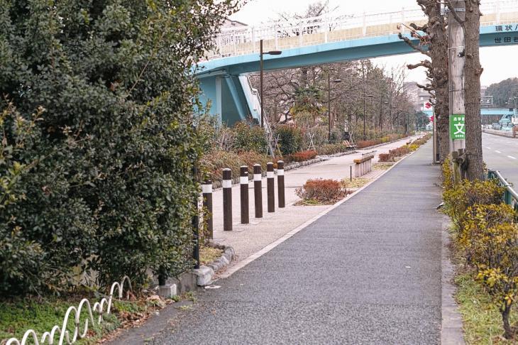 160206karasuyamagawa-40.jpg