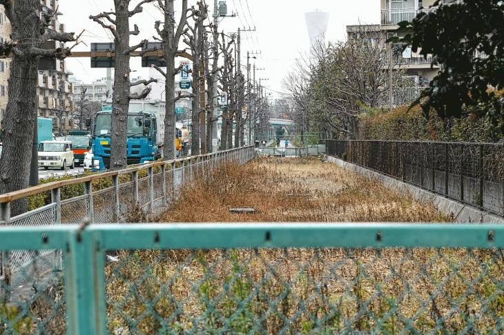 160206karasuyamagawa-42.jpg