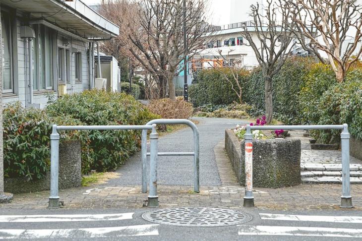 160206karasuyamagawa-45.jpg