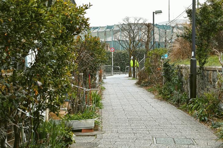 160206karasuyamagawa-48.jpg