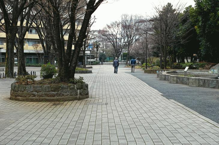 160206karasuyamagawa-56.jpg