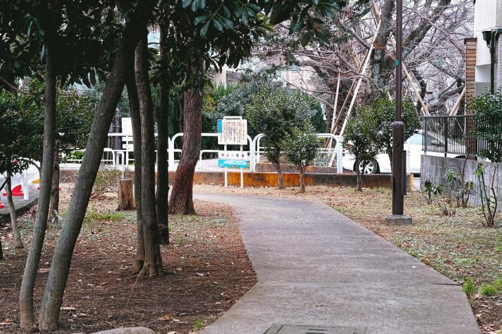 160206karasuyamagawa-57.jpg