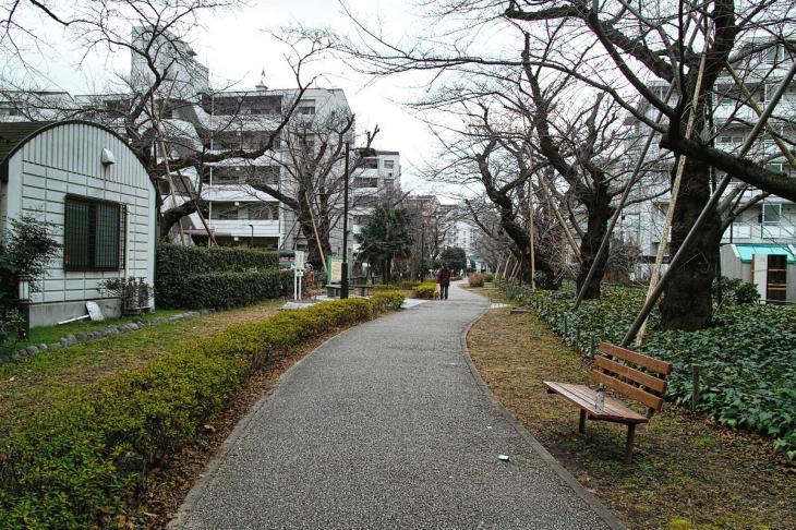 160206karasuyamagawa-58.jpg