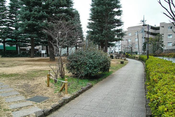 160206karasuyamagawa-59.jpg