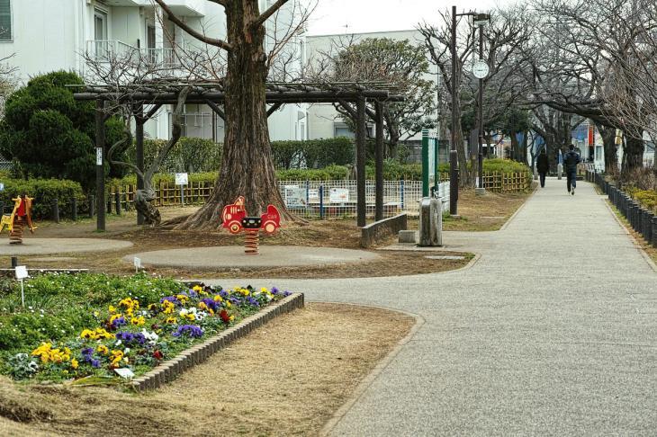 160206karasuyamagawa-64.jpg