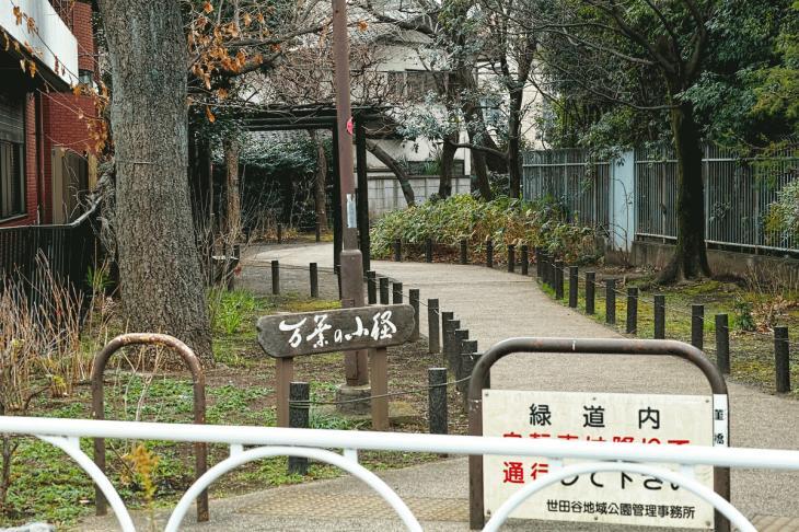 160206karasuyamagawa-66.jpg