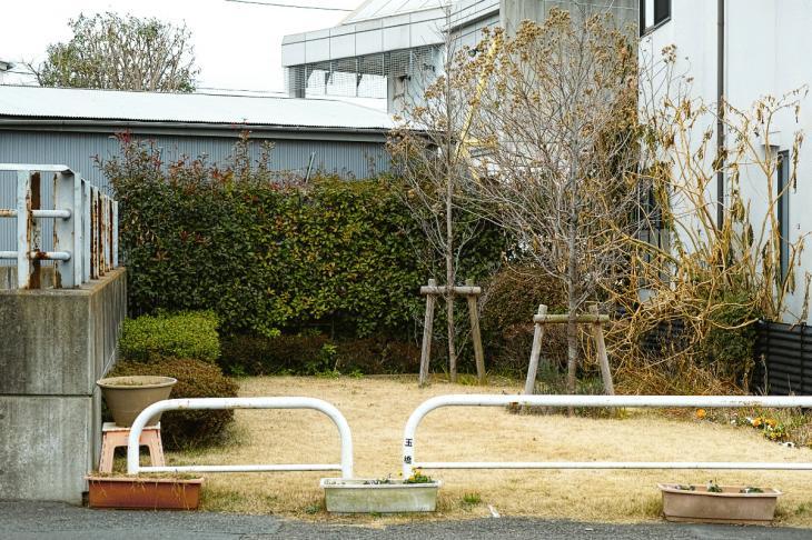 160206karasuyamagawa-73.jpg