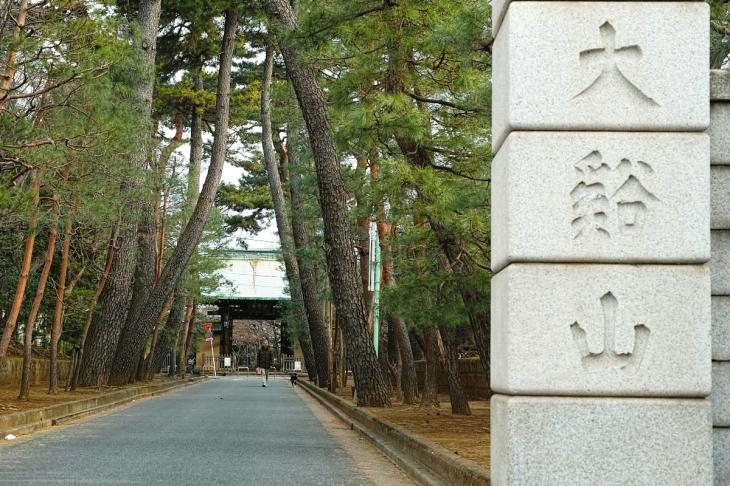 160206karasuyamagawa-75.jpg