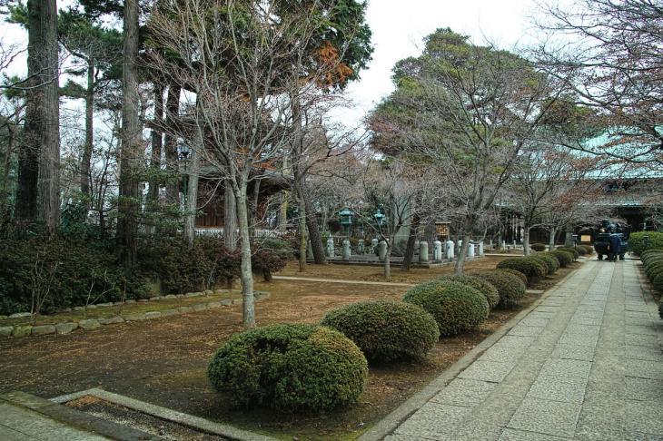 160206karasuyamagawa-77.jpg