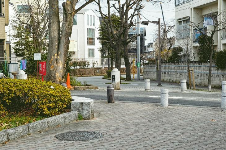 160206karasuyamagawa-78.jpg