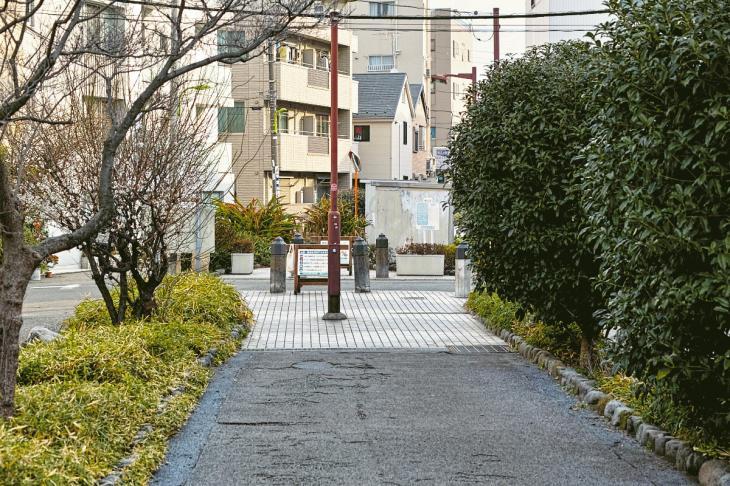 160206karasuyamagawa-83.jpg