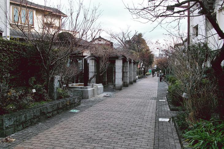 160206karasuyamagawa-85.jpg
