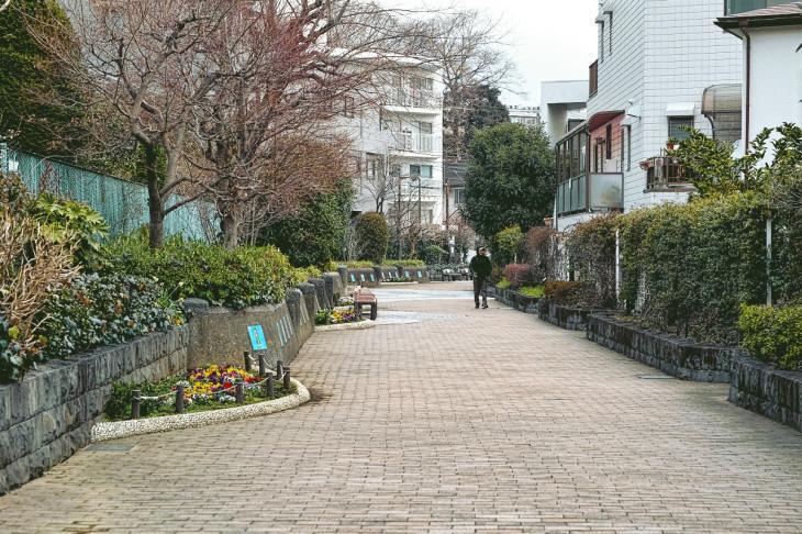 160206karasuyamagawa-88.jpg