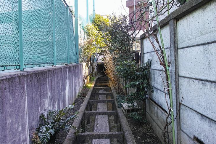 160211karasuyamagawa_joryu-18.jpg