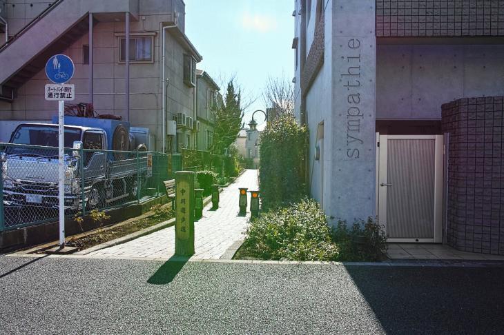 160211karasuyamagawa_joryu-24.jpg