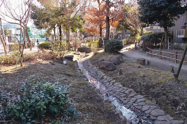 160211karasuyamagawa_joryu-25.jpg