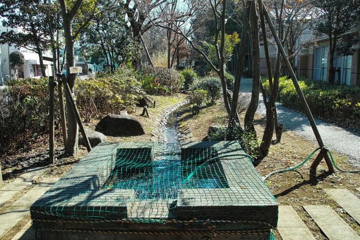 160211karasuyamagawa_joryu-26.jpg