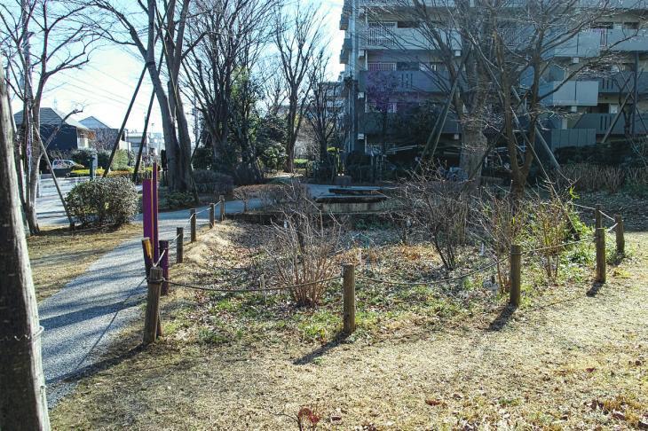 160211karasuyamagawa_joryu-27.jpg