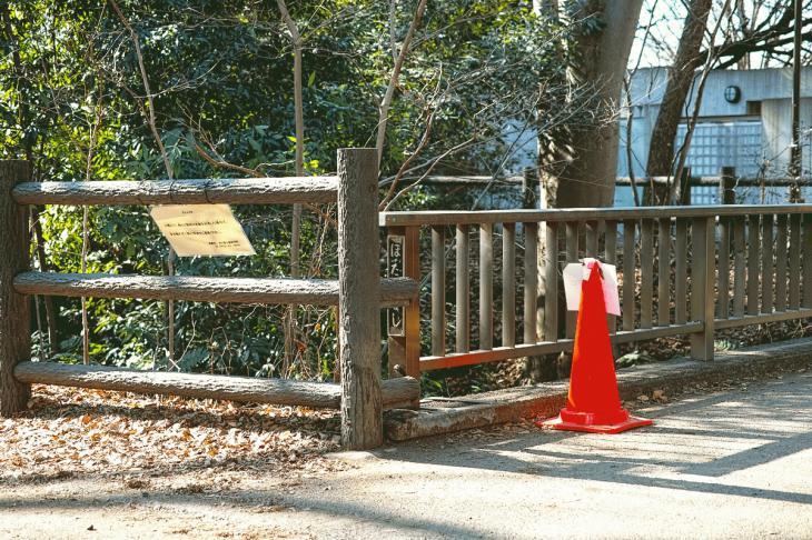 160211karasuyamagawa_joryu-3.jpg