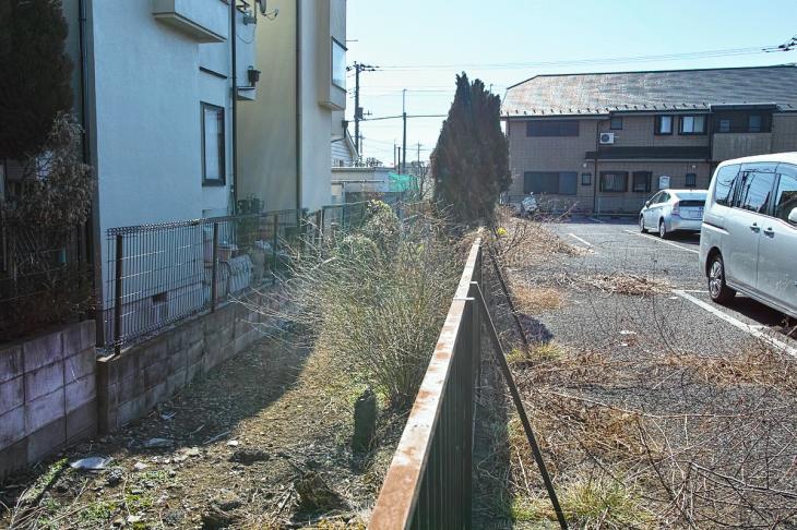 160211karasuyamagawa_joryu-39.jpg