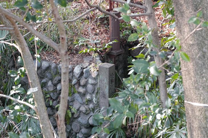 160211karasuyamagawa_joryu-6-3.jpg