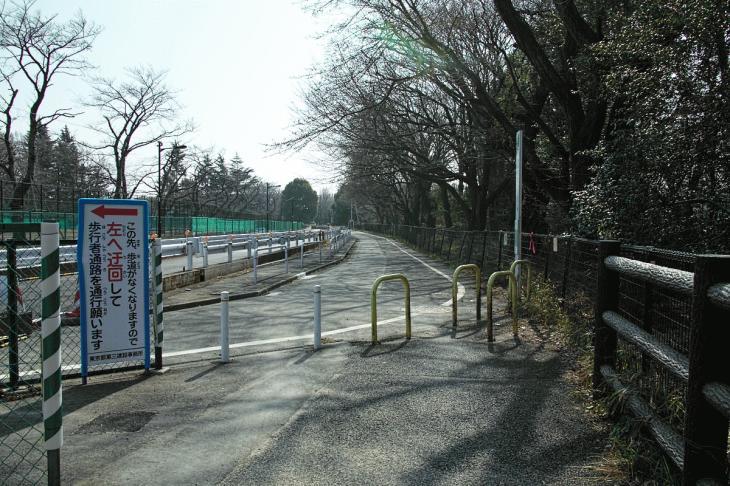 160211karasuyamagawa_joryu-6-6.jpg