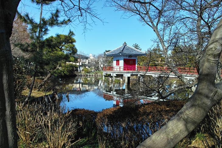 160211karasuyamagawa_joryu-9.jpg
