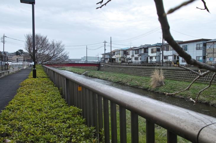 160320marukogawa-2.jpg
