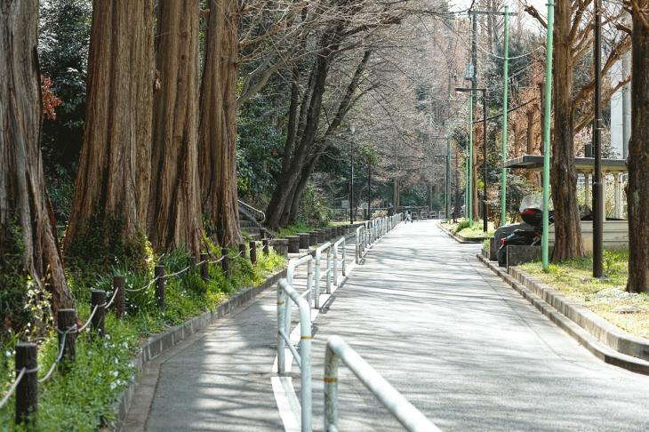 160320marukogawa-20.jpg