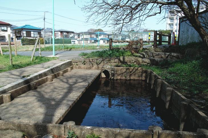 160320marukogawa-26.jpg