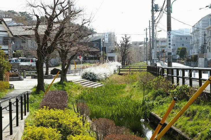 160320marukogawa-44.jpg