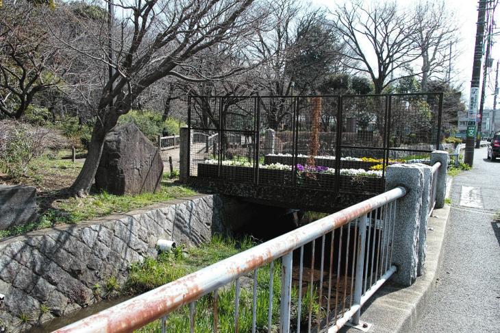 160320marukogawa-47.jpg